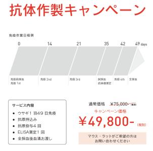 スクリーンショット 2014-06-11 12.36.47